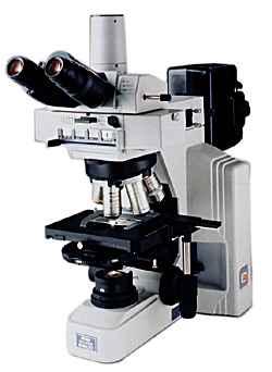 Epifluorescent Upright Microscope